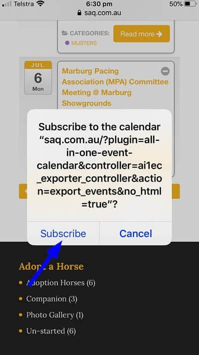 Screen shot showing subscribe button option