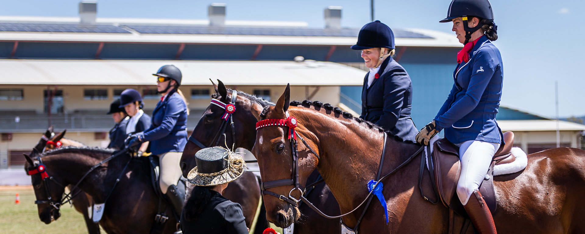 2021 SAQ State Hacking and Harness Championships - Standardbred horses lined up.